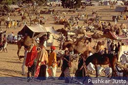 pushkar_fair_sp